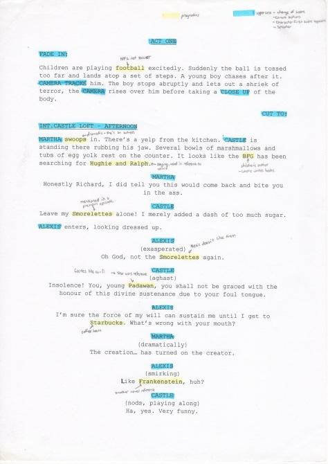 Castle Script Analysis